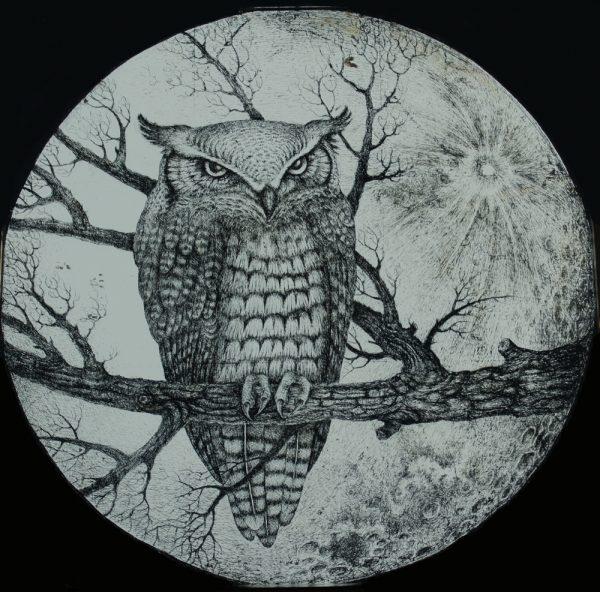 Ravenglass Owl by Katy Quinn